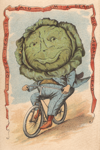 Cabbage Vegetable Rider Poster