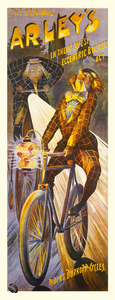 Alleys German Bicycle Poster