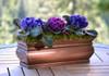 H Potter Window Box Flower Garden Planter