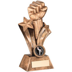 BRZ/GOLD RESIN MARTIAL ARTS FIST TROPHY - (1in CENTRE) 7in