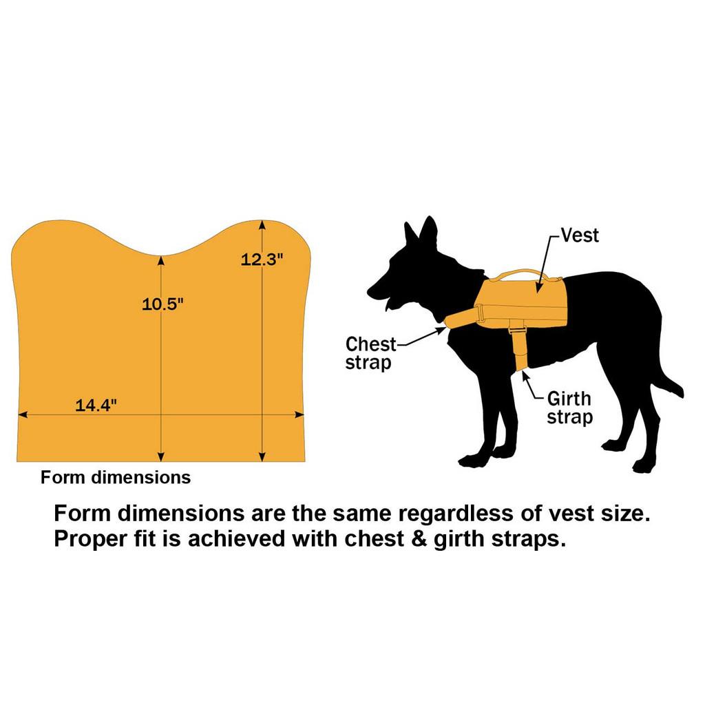 Vest Graphic