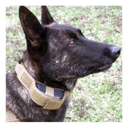 Receiver Collar - Coyote