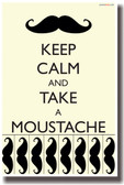 PosterEnvy - Keep Calm and Take a Mustache - NEW Humor Poster
