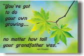 """You've got to do your own growing no matter how tall your grandfather was."""