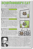 Schrodingers Cat - Classroom Science Poster Print Gift
