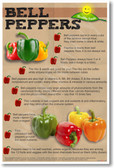 Healthy Foods Bell Peppers NEW Health Food Nutrition Poster vegetables veggies organic snacks lunch healing cure cancer (he066)