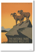 The National Parks Preserve Wildlife - NEW Vintage Reprint Poster