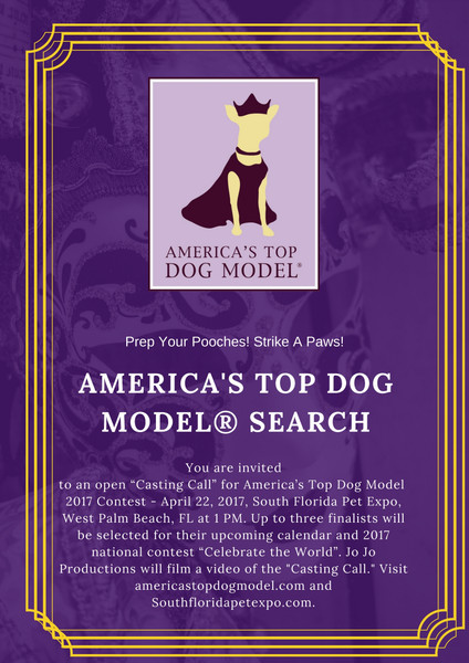 Dog Model Search