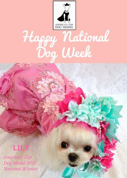 Happy National Dog Week