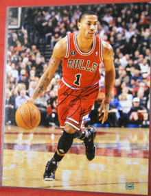 DERRICK ROSE AUTOGRAPHED CHICAGO BULLS 16X20 PHOTO AAA RED