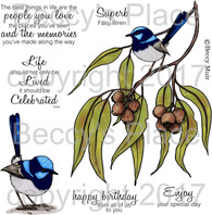 Superb Fairy Wren digital stamps