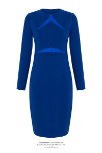 Royal Blue fitted dress with sleeves and a round neckline