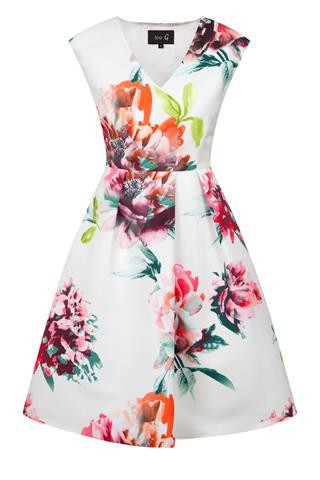 Floral vneck waisted dress with full skirt