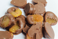Milk chocolate covered dry apricot