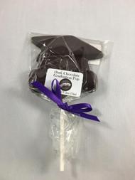 Vermont Nut Free Dark Chocolate Graduation Pop