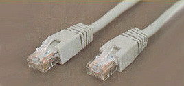 25 ft. CAT 6 Network 556MHz Network Patch Cable