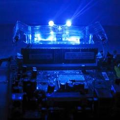 EverCool Neon Crab Memory Cooler