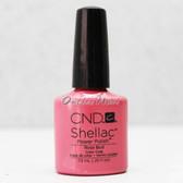 CND Shellac UV Gel Polish - ROSE BUD 40511 7.3ml 0.25oz Pink Color Basic Collection