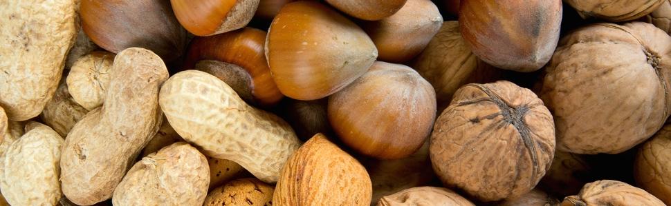 Almonds, Brazil Nuts, Filberts, Mixed Nuts, Peanuts, Pecans, Pistachios & Walnuts