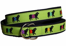 Belted Cow Ribbon Belt on Lime (D-Ring)