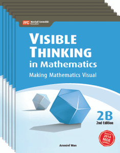 Visible Thinking in Mathematics Grade 2B (6 Pack) - Low Stock, Restocking Aug 1, 2018