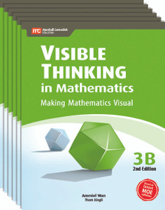 Visible Thinking in Mathematics Grade 3B (6 Pack) - Restocking Aug 1, 2018