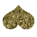 Organic Matcha Green Powder Loose Leaf Tea