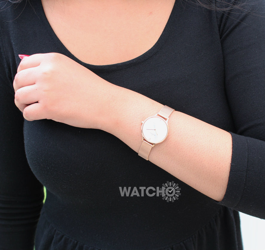 Watch Review - Skagen SKW2151 Anita Rose Gold Watch
