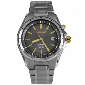 Seiko Mens Kinetic Titanium Watch SKA495P1