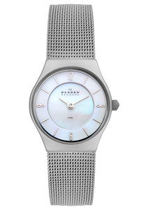 Skagen Ladies Silver-Tone Watch 233XSSS