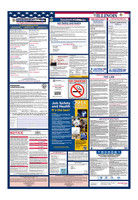 Illinois Total Labor Law Poster