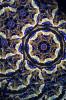 Kaleidoscope 'Mystique' in Cobalt Blue by Peggy & Steve Kittelson