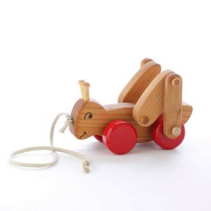 Grasshopper Pull Toy