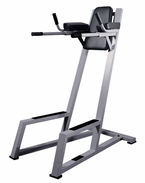 York Barbell Vertical Knee Raise with Dip Station (54032)