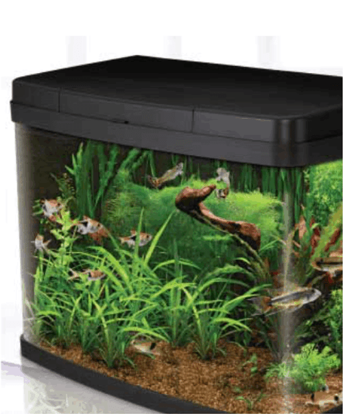 Insight Aquarium 64 Litre