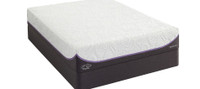 Inspiration Gold Plush Queen Mattress