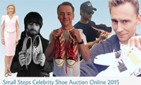 Small Steps Charity Auction