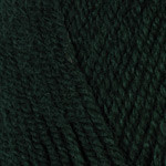 Plymouth Encore Worsted Forest Green #204