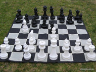 COMBO Garden Chess and Checkers