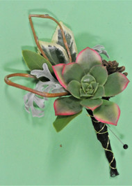 Succulent Boutonniere designed uniquely at Earle's Loveland