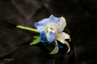 White Orchid. Blue Delphinium and Stone Accent Boutonniere