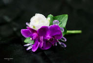 Dark Purple Orchid Boutonniere