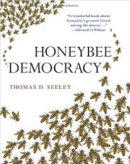 Honey Bee Democracy