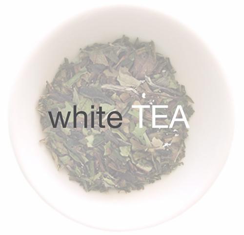 white-tea-basics.jpg