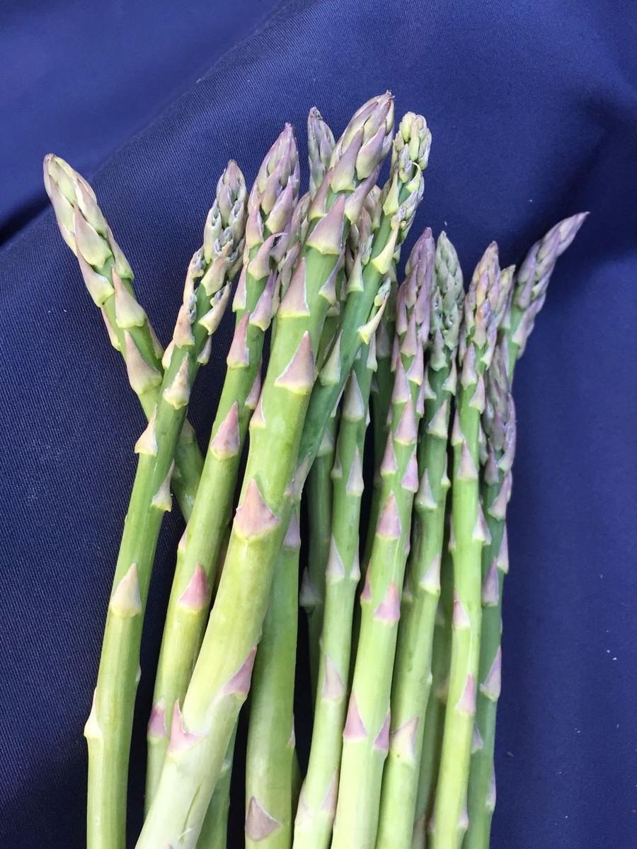 Asparagus Jersey Supreme