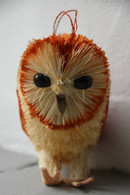 Bristle Barn Owl