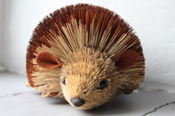 Large Bristle Hedgehog