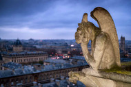 The Bored Gargoyle of Notre-Dame by Karen McDonald