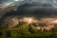 Morning Fog Over Holbav Hills by Mihail Dulu