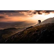 Sunset Ride by Sandi Bertoncelj